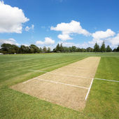 Cricket pitch background — Stock Photo