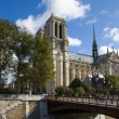 Notre Dame de Paris cathedral,  Paris, France — Stock Photo