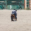 Little Britches Rodeo - Stock Photo