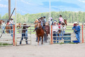 Little Britches Rodeo — Stock Photo