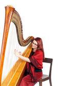 Harp Concert — Stock Photo