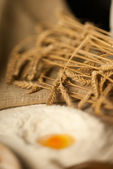 Tilt shift yumurta — Stok fotoğraf