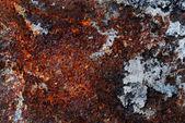 Rusty plate — Stock Photo