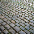 Cobblestone road. — Stock Photo #11409231