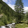 South Tyrol 017 - Stock Photo
