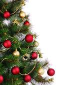 Julgran på vit — Stockfoto