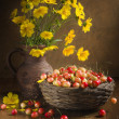 "Cherry ""still life"" — Stock Photo"
