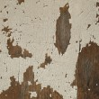 Royalty-Free Stock Photo: Abstract rustic wall background