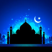 Taj Mahal at Night — Stock Vector