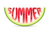 Summer Watermelon — Stock Vector