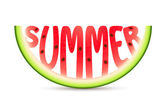 Summer Watermelon — Stock Vector