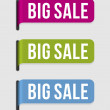 Modern label – big sale — Stock Vector