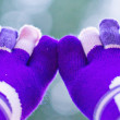 Stock Photo: Purple socks with separate toes