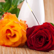 rot und orange Rosen — Stockfoto #12103065