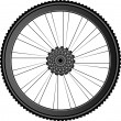 Bike wheel - vector illustration on white - Stock Vector