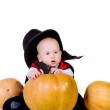 Baby boy in black halloween cloak playing with pumpkin — Stock Photo