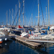 Marina under blue sky - Photo
