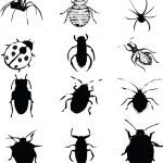 Постер, плакат: Bugs set