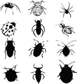 Bugs set — Stock Vector