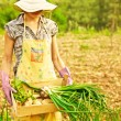 Happy gardener working — Stock Photo #11166933