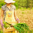 Happy gardener working — Stock Photo