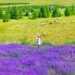 Beautiful girl enjoying lavender field — Stock Photo #11403845