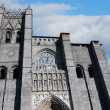 Cathedral city Avila, Spain — Stock Photo #11312576