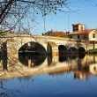 Roman bridge on Arlanza river in the Puentedura town. Castilla - — Stock Photo