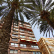 Buildings and palm trees typical of the city of Alicante Spain - Stock Photo
