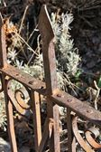 Rusty old fence detail — Stock Photo