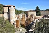Ruinas de la iglesia de san pedro de arlanza en la provincia de b — Foto de Stock