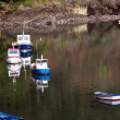 Fishing boats moored in a beautiful calm bay — Stock Photo #12292880