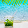 Royalty-Free Stock Photo: Mojito cocktail with peppermint leaves and lemon