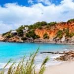 Cala d Hort Ibiza beach with traditional wood mooring — Stock Photo #11358749