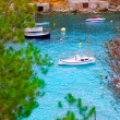 Cala Vadella in Ibiza island with turquoise water — Stock Photo #11358773