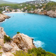 Cala Vadella in Ibiza island with turquoise water — Stock Photo #11358782