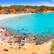 Cala Llenya in Ibiza with turquoise water in Balearic - Photo