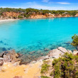 Cala Llenya in Ibiza with turquoise water in Balearic — Stock Photo #11359076