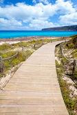 Balearen formentera eiland hout strand manier — Stok fotoğraf