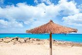 Balearic Formentera island with umbrella dried sunroof — Stock Photo