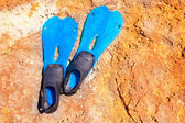 Blue scuba diving fins on summer day over rock — Stock Photo