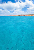 Cala Saona beach in formentera with fishes — Stock Photo