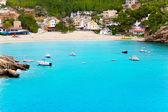 Cala Vadella in Ibiza island with turquoise water — Stock Photo