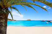 Ibiza Patja des Canar beach with turquoise water — Stock Photo