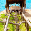 Beached boat in wood railway at Formentera — Stock Photo