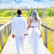 Foto Stock: Couple happy in wedding day walking rear view