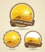 Getreide-ernte-etikett — Stockvektor