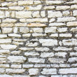 Limestone wall — Stock Photo #11109483