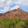 Desertic landscape of utah in the USA — Stock Photo #11871449