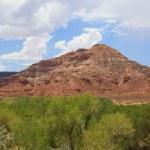Desertic landscape of utah in the USA — Stock Photo